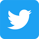 Twitter Link Logo